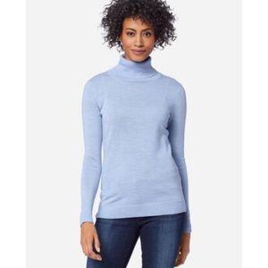 Pendleton   Soft Blue Merino Wool Turtleneck
